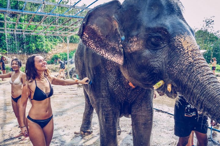 Having a bath with the elephants in Phuket